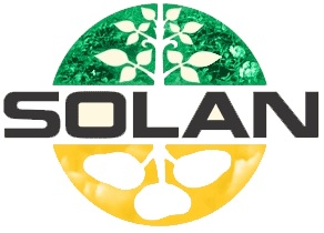 Solan Investement